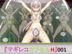 [RE253501] MagiReco Capsule H001