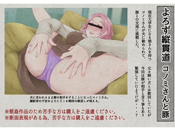 [RE266404] On the Road to Everywhere Wrong: Konomi And The Pig
