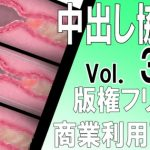 [Copyright Free] Internal Cumshot Cross-section Ero Animation Material Set Vol. 3