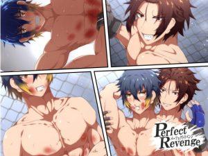[RE310162] Perfect Revenge ~Illustrated Novel~ 2